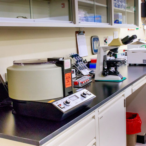 Lab equipment in lab at Damien Fertility Partners